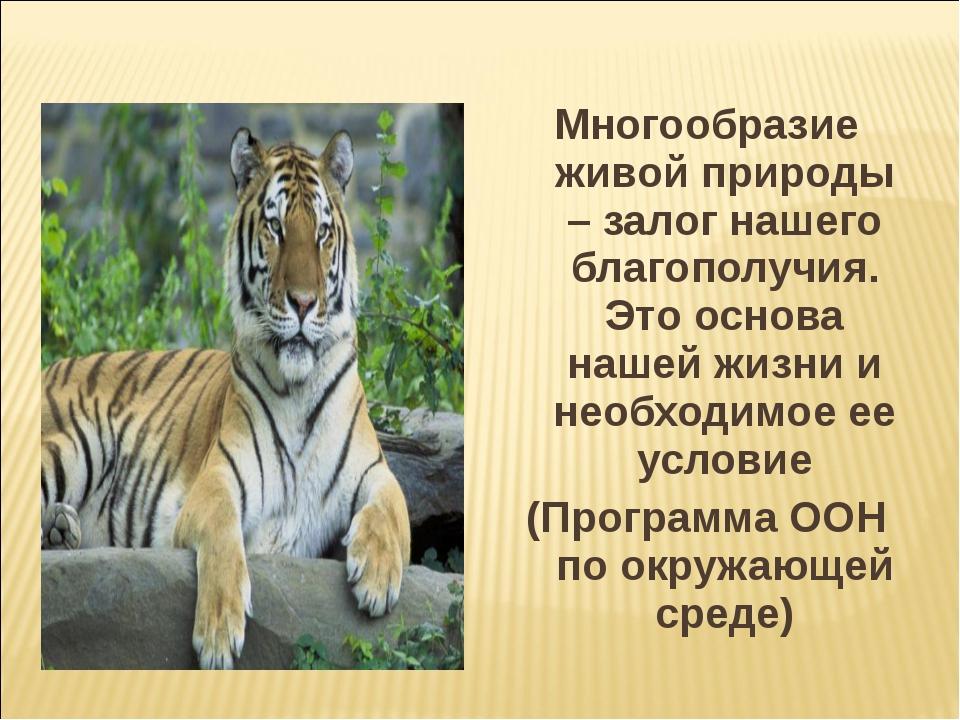 Многообразие живой природы – залог нашего благополучия. Это основа нашей жизн...
