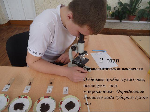 Органолептические показатели Отбираем пробы сухого чая, исследуем под микрос...