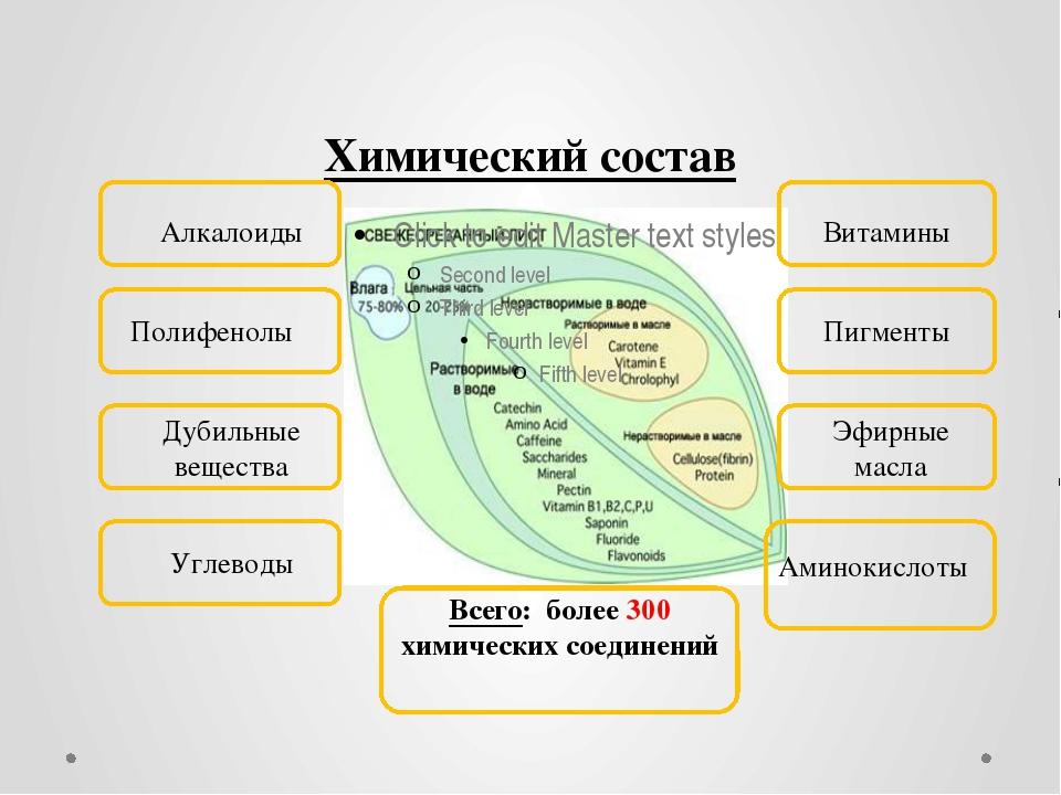 Химический состав Алкалоиды Витамины Полифенолы Пигменты Дубильные вещества Э...