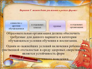 Вариант С может быть реализован в разных формах: Образовательная организация