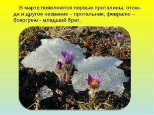 В марте появляются первые проталины, отсю- да и другое название – протальник
