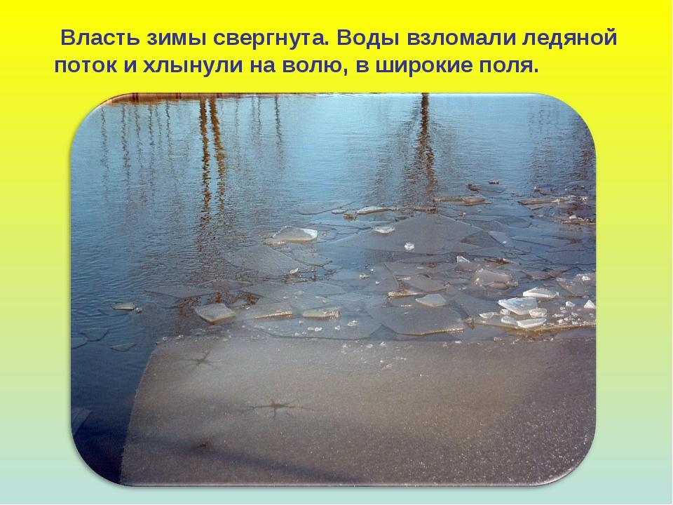 Власть зимы свергнута. Воды взломали ледяной поток и хлынули на волю, в широ...