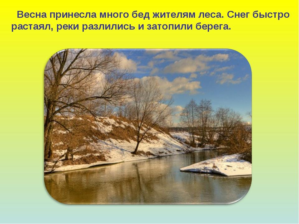 Весна принесла много бед жителям леса. Снег быстро растаял, реки разлились и...