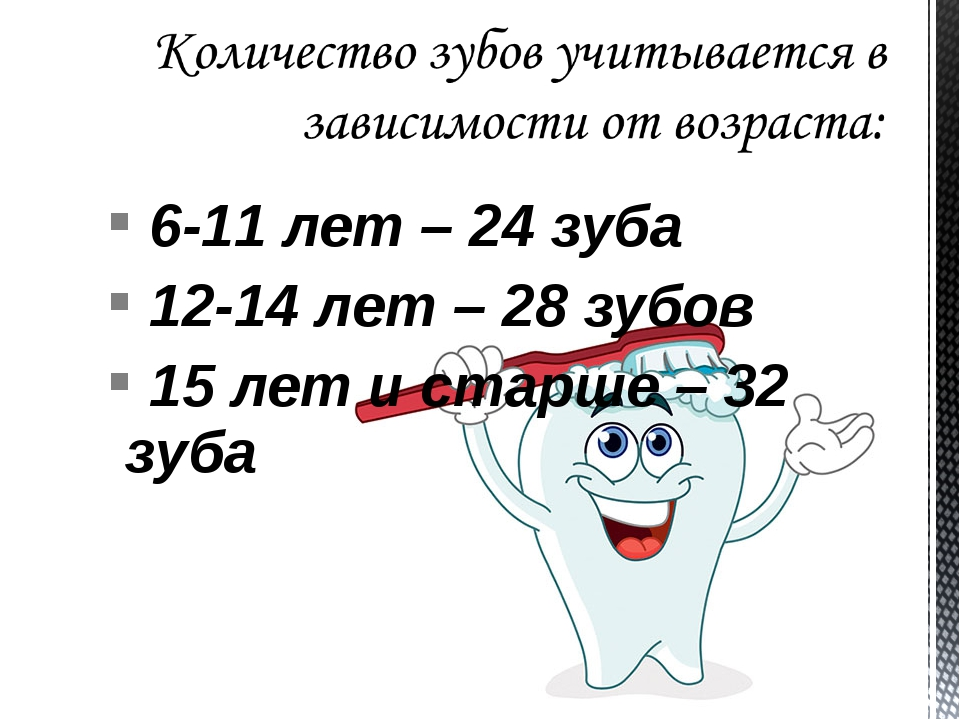 6-11 лет – 24 зуба 12-14 лет – 28 зубов 15 лет и старше – 32 зуба
