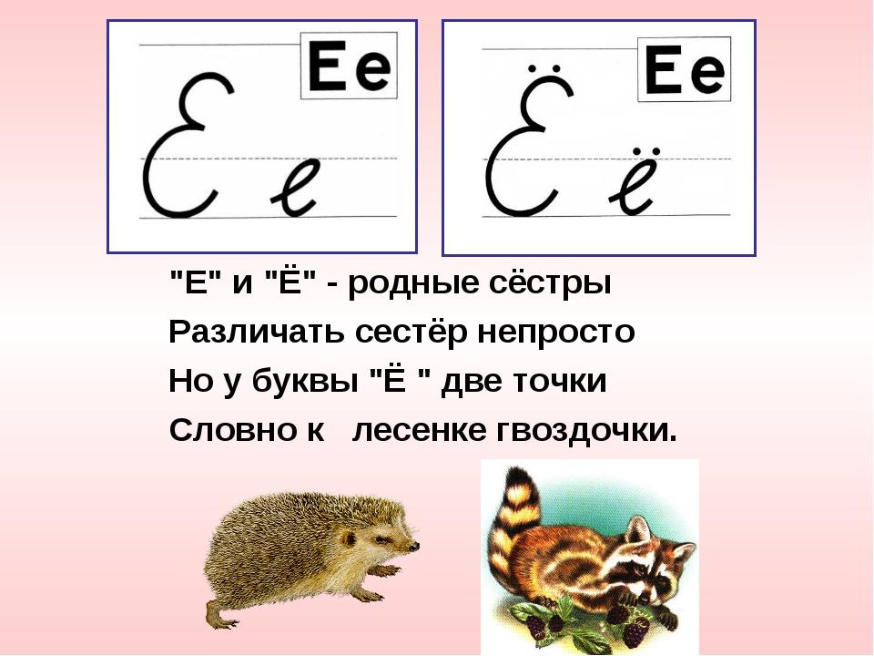 """""""Е"""" и """"Ё"""" - родные сёстры Различать сестёр непросто Но у буквы """"Ё """" две точки..."""