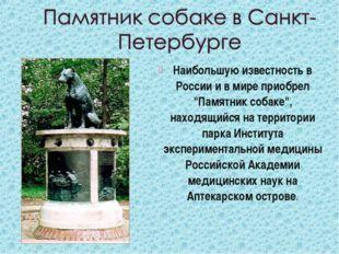 """Наибольшую известность в России и в мире приобрел """"Памятник собаке"""", находящи"""