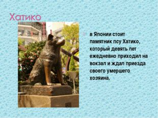 в Японии стоит памятник псу Хатико, который девять лет ежедневно приходил на