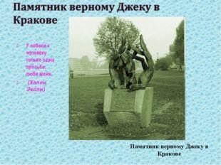 Памятник верному Джеку в Кракове У собаки к человеку только одна просьба: люб