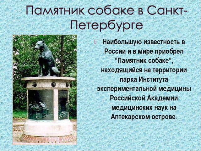 """Наибольшую известность в России и в мире приобрел """"Памятник собаке"""", находящи..."""