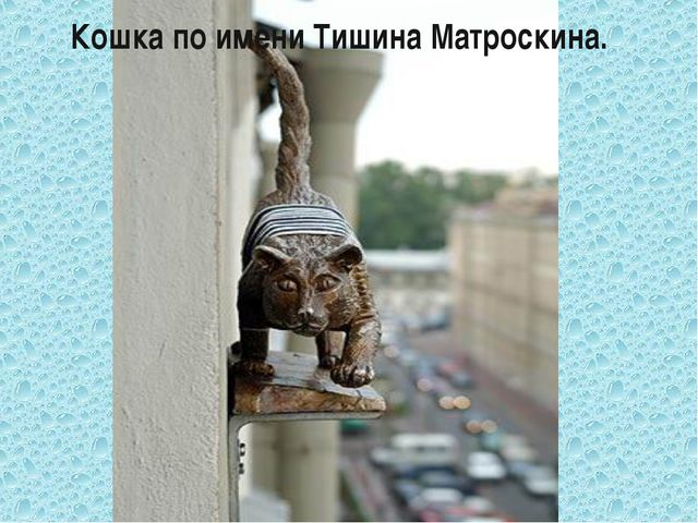 Кошка по имени Тишина Матроскина.