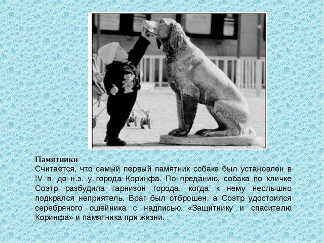 Памятники Считается, что самый первый памятник собаке был установлен в IV в....