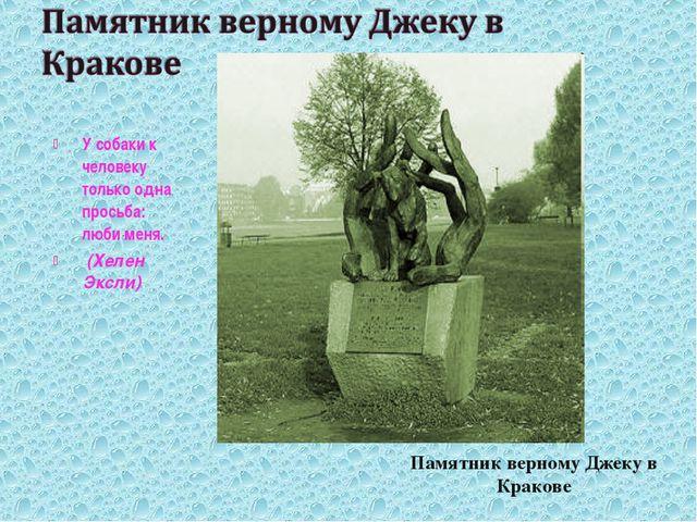 Памятник верному Джеку в Кракове У собаки к человеку только одна просьба: люб...