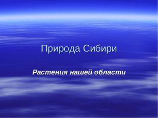 Природа Сибири Растения нашей области