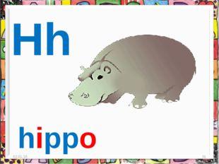 * * Hh hippo