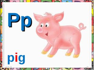 * * Pp pig