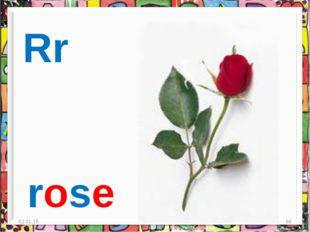 * * Rr rose