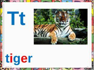 * * Tt tiger
