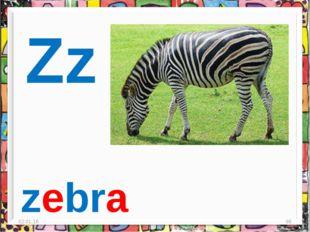 * * zebra Zz