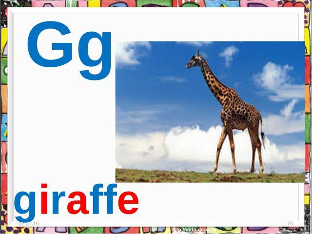 * * Gg giraffe