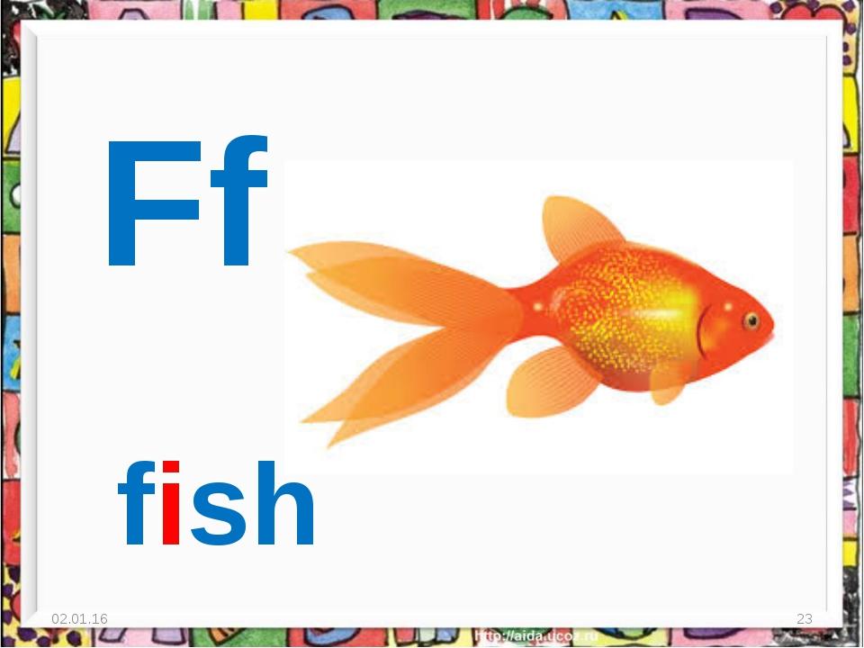* * Ff fish