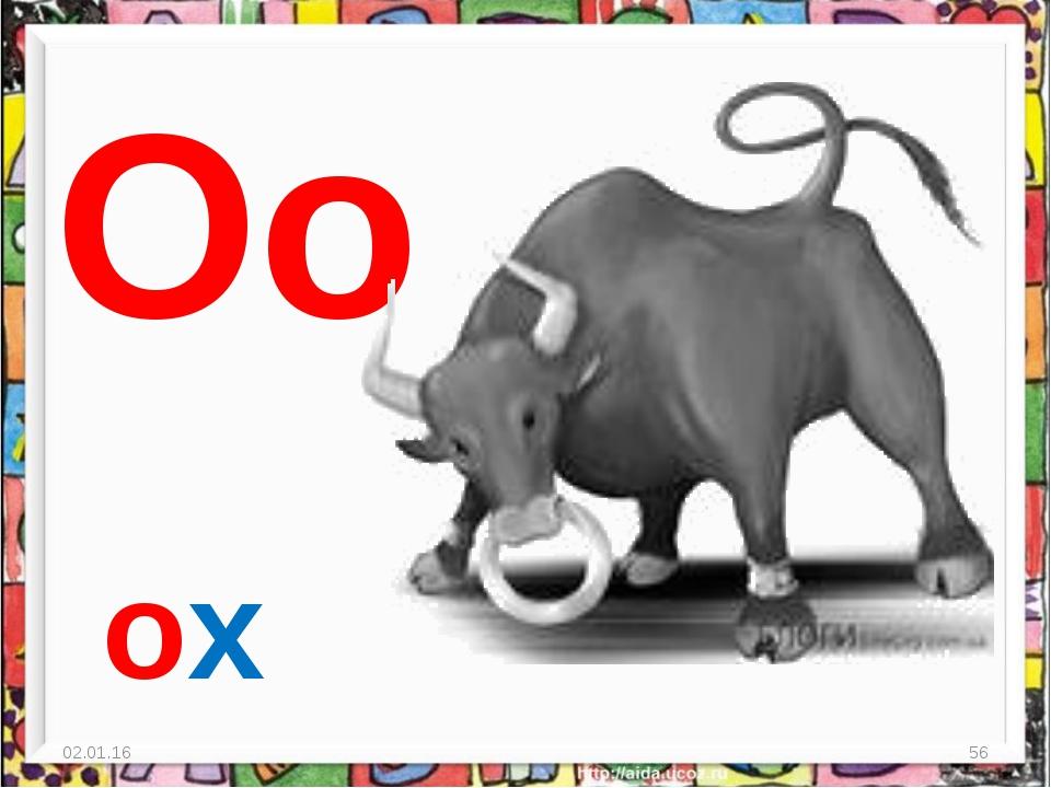 * * Oo ox