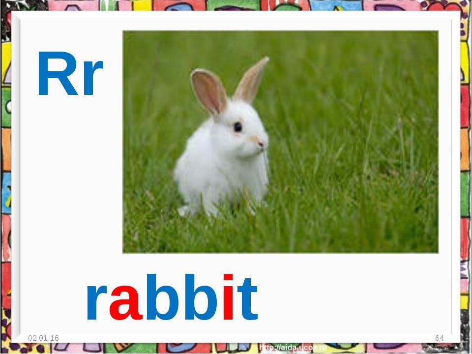 * * Rr rabbit