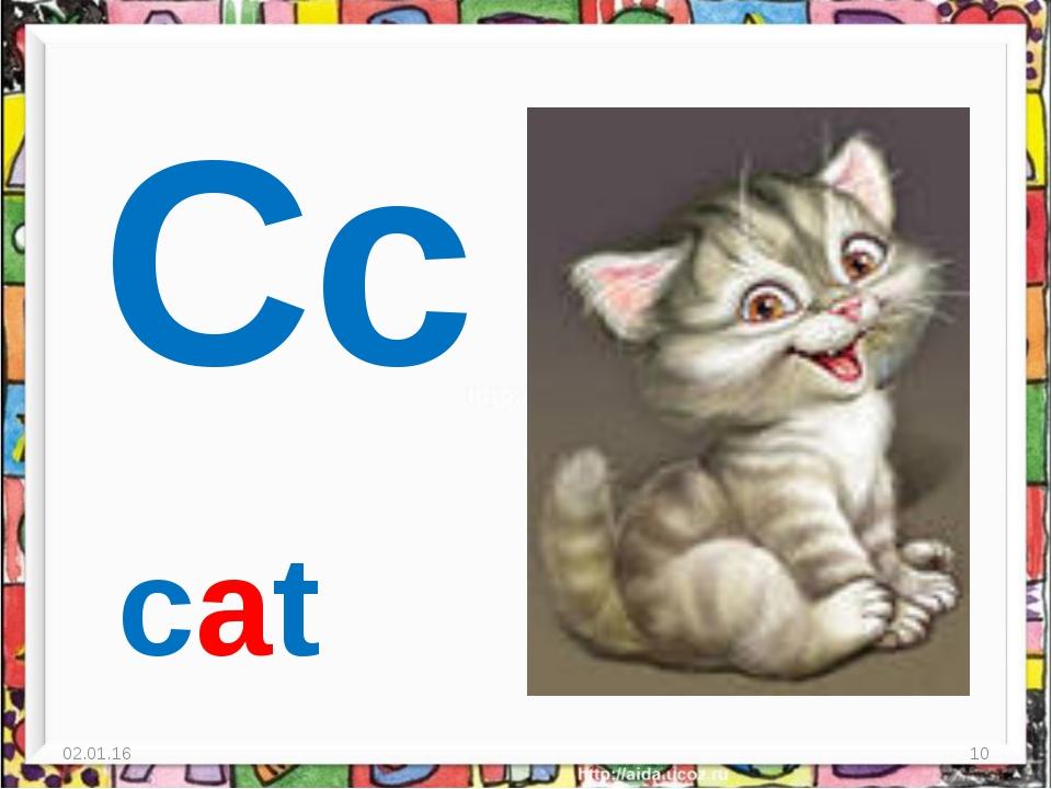 * * Cc cat
