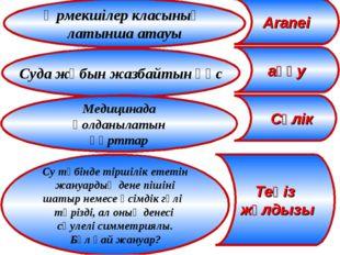 Өрмекшілер класының латынша атауы Aranei Суда жұбын жазбайтын құс Медицинада