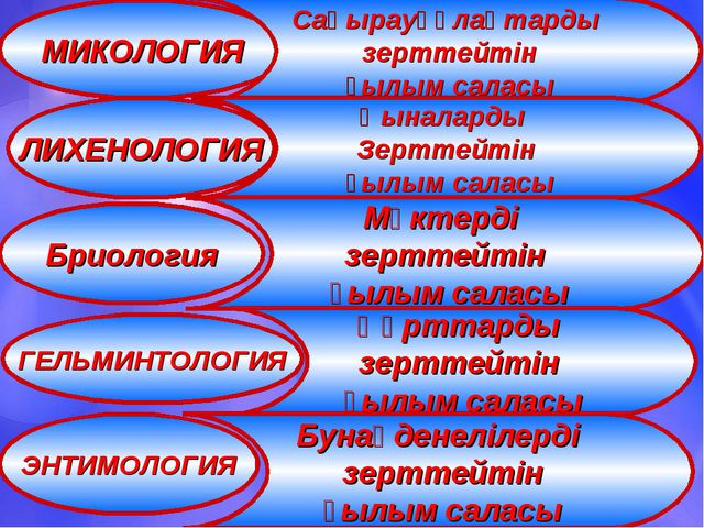 МИКОЛОГИЯ ЛИХЕНОЛОГИЯ Бриология ГЕЛЬМИНТОЛОГИЯ ЭНТИМОЛОГИЯ