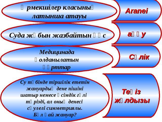 Өрмекшілер класының латынша атауы Aranei Суда жұбын жазбайтын құс Медицинада...