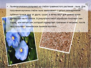 Льняное волокно получают из стебля травянистого растения - льна. Для получени