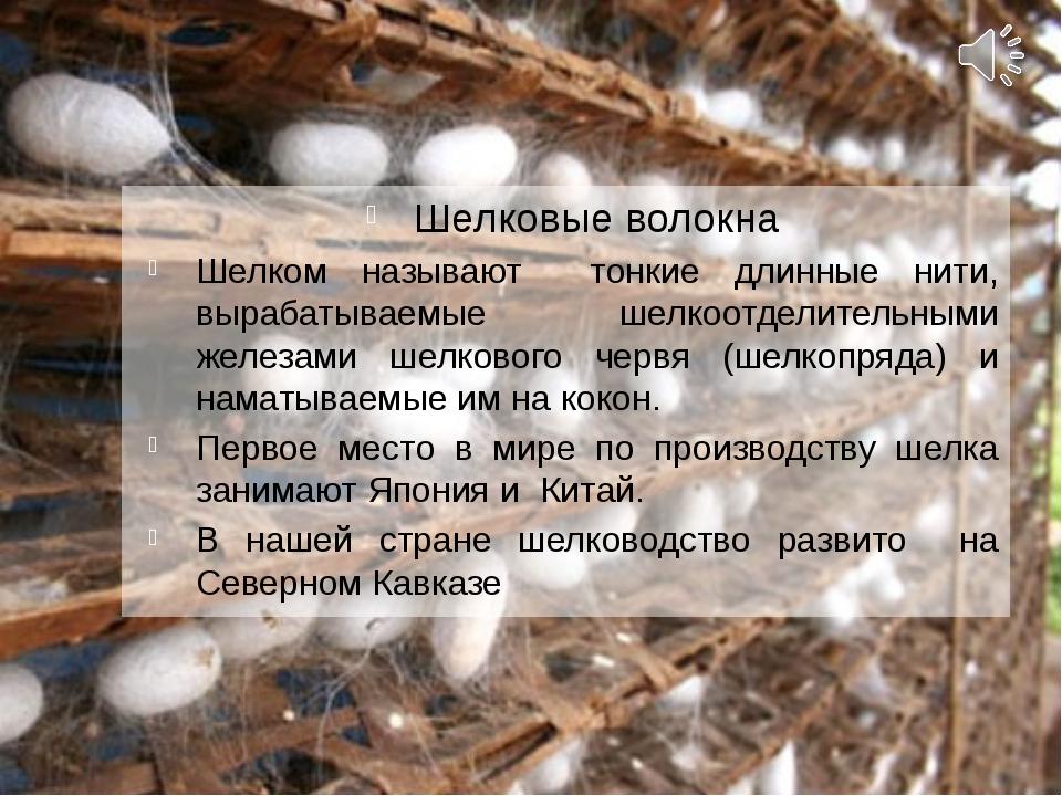 Шелковые волокна Шелком называют тонкие длинные нити, вырабатываемые шелкоотд...