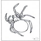 C:\Анюта\новый класс уч.годы 2011-2015\окр.мир\насекомые\картинки\pajak-n2080.jpg
