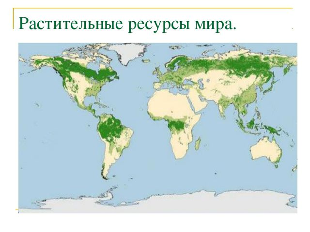 Растительные ресурсы мира.