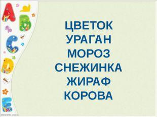ЦВЕТОК УРАГАН МОРОЗ СНЕЖИНКА ЖИРАФ КОРОВА