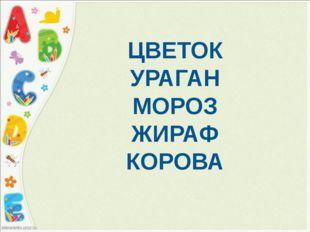 ЦВЕТОК УРАГАН МОРОЗ ЖИРАФ КОРОВА