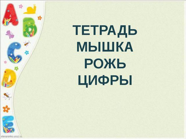 ТЕТРАДЬ МЫШКА РОЖЬ ЦИФРЫ