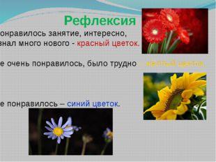 Рефлексия Понравилось занятие, интересно, узнал много нового - красный цвето