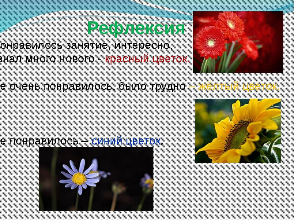 Рефлексия Понравилось занятие, интересно, узнал много нового - красный цвето...