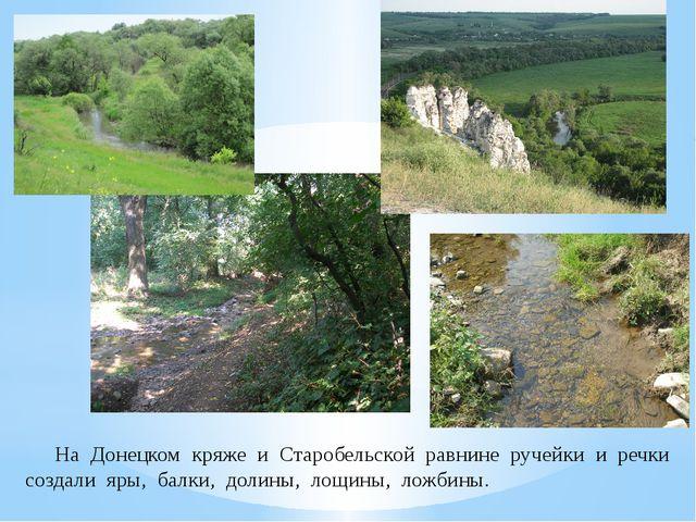 На Донецком кряже и Старобельской равнине ручейки и речки создали яры, балки...