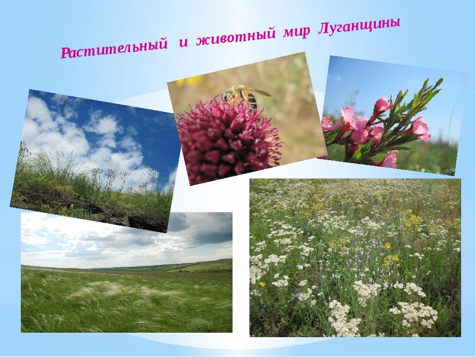 Растительный и животный мир Луганщины