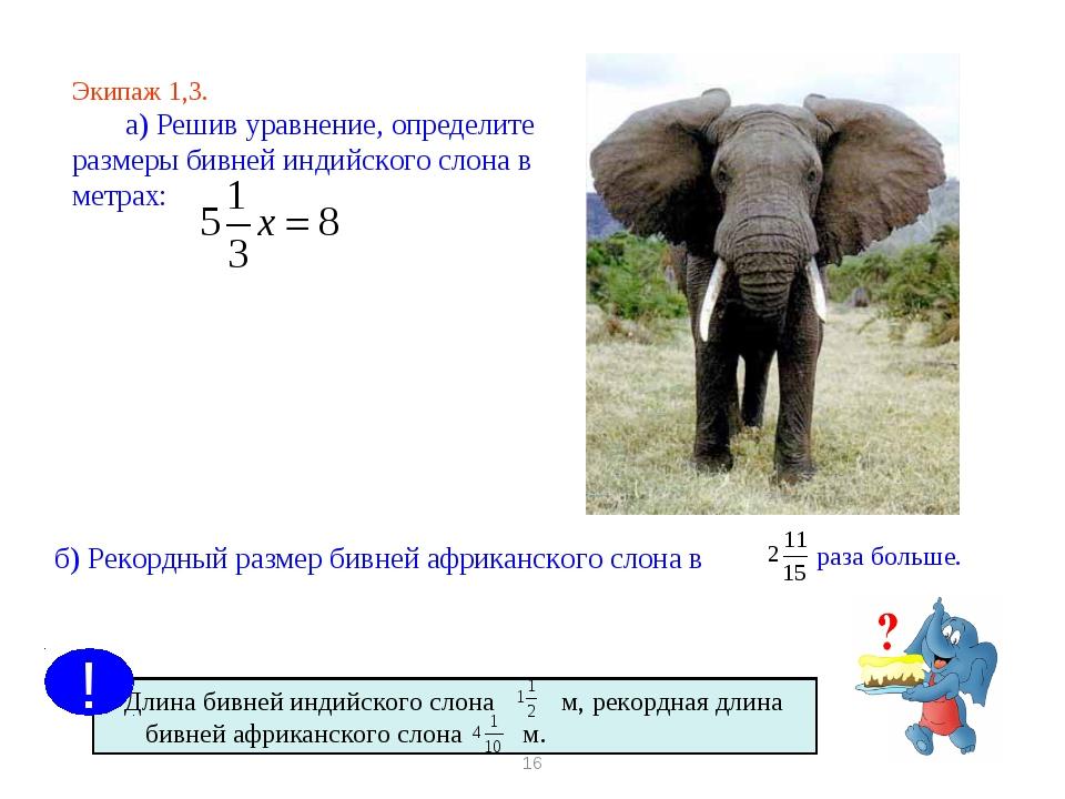 * Экипаж 1,3. а) Решив уравнение, определите размеры бивней индийского слона...