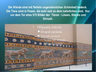 Die Wände sind mit Reliefs ungewöhnlichen Schönheit bedeck. Die Tiere sind in