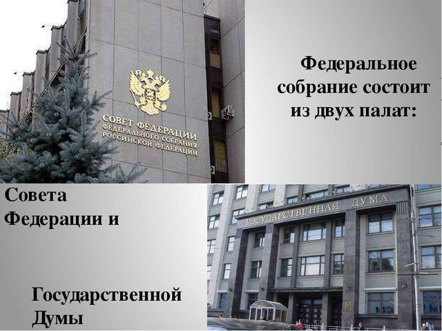 Федеральное собрание состоит из двух палат: Совета Федерации и Государственн...