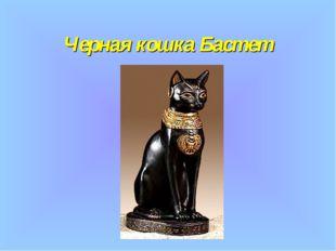 Черная кошка Бастет