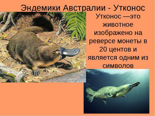 Эндемики Австралии - Утконос Утконос —это животное изображено на реверсе моне...