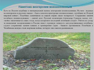 Памятник венгерским военнопленным Есть на Лесном кладбище и мемориальный кам