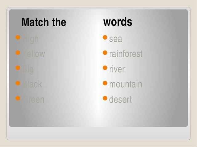Match the words High Yellow Big Black Green sea rainforest river mountain de...