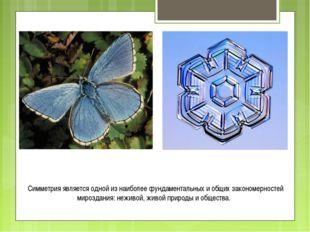 Симметрия является одной из наиболее фундаментальных и общих закономерностей