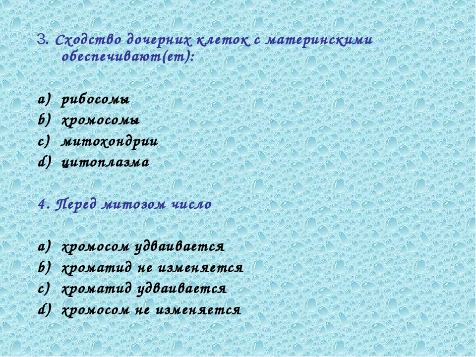 3. Сходство дочерних клеток с материнскими обеспечивают(ет): рибосомы хромосо...